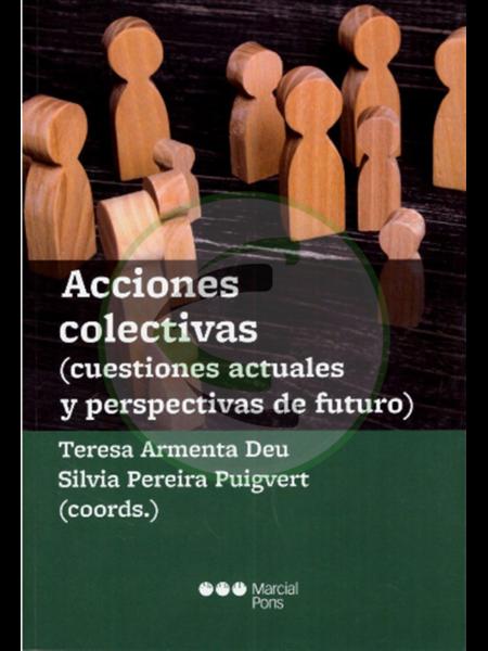 Acciones colectivas (cuestiones actuales y perspectivas de futuro)